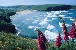 Mawgan Porth SW Coastal Path UK Trekking and Hiking Holidays