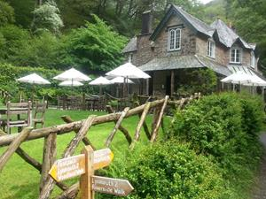 Cream Teas and cake await you at Watersmeet