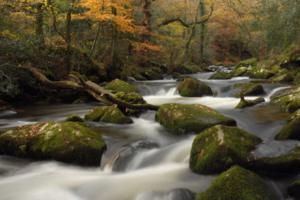 River Dart The Dartmoor Way in Devon Walking Holiday South West England