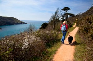 Holidays with dogs on the Cornish Coastal Path UK Hiking Route