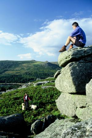 Accommodation with a dog Walking Holidays Devon and Dartmoor National Park