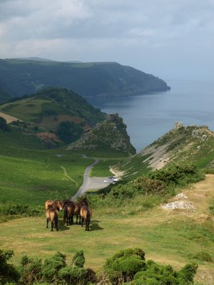 Exmoor Walking Holidays UK Valley of the Rocks South West Coastal Path