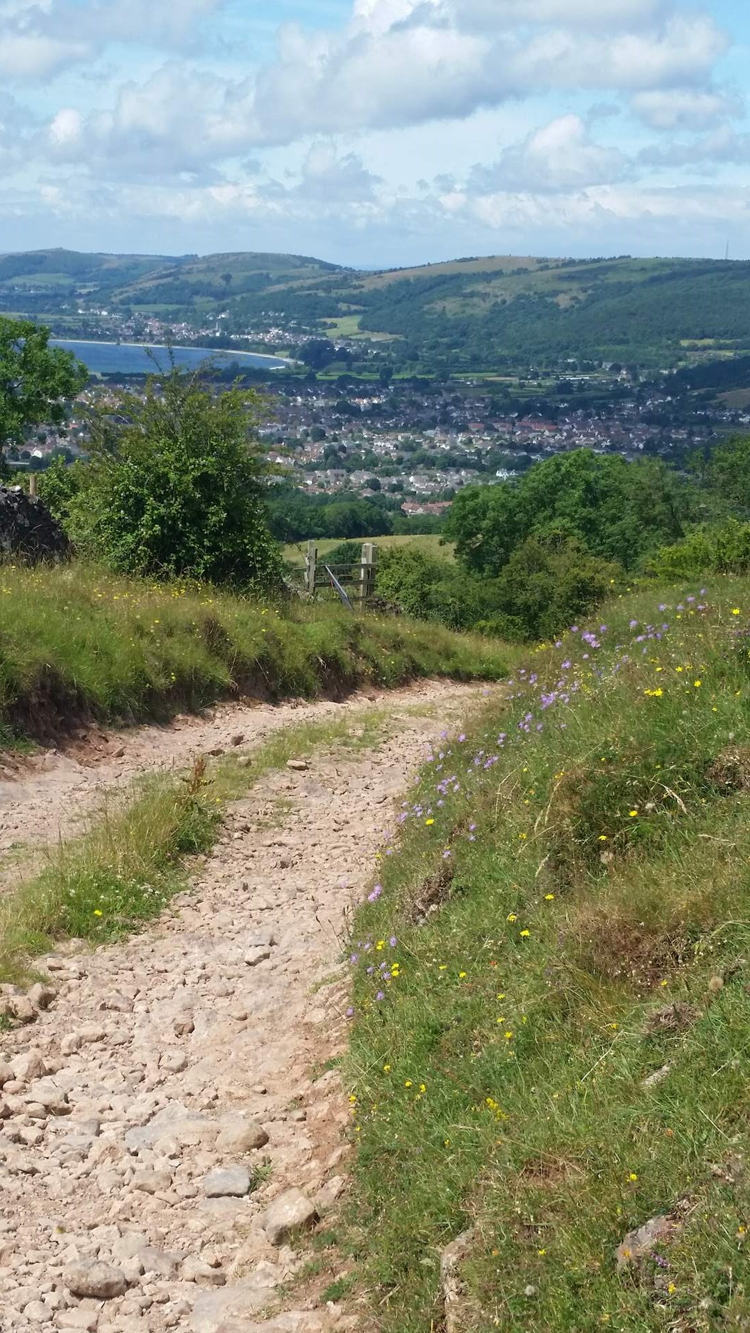 Walk on The Mendip Way