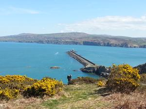 Goodwick Breakwater, Wales. Walking holidays and short breaks UK.
