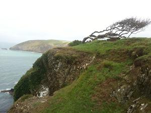 Sea Arch beyond Fishguard, Welsh Coastal Path, views when walking in Wales.