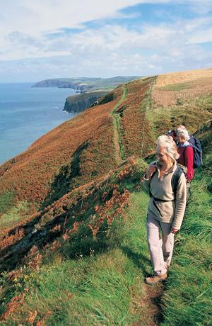 Dog Walks North West Wales