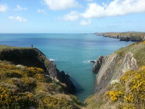 Caerfai Bay Coast Path, walking in wales and pembrokshire.