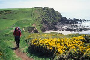 Westdale Bay, Pembrokeshire Coast Path. Walking in Wales.