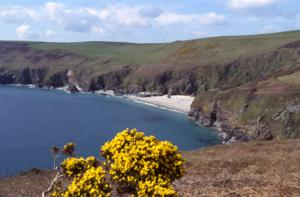 Lantic Bay near Fowey South West Coast Path Walking Holidays and Tours
