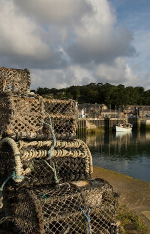Padstow Walking Holidays, North Cornwall Short Breaks, Walking Holidays Great Britain
