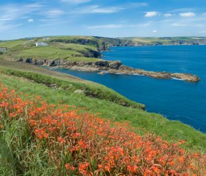 North Cornwall Coast Path Port Isaac area on the UK's longest hiking and trekking trail