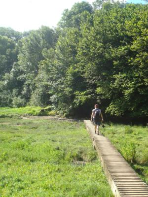 Saints Way Walk near Little Petherick Creek UK Walking Holidays Cornwall