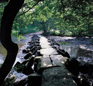 2 Moors Way Holidays  The Tarr Steps at Exmoor National Park Withypool